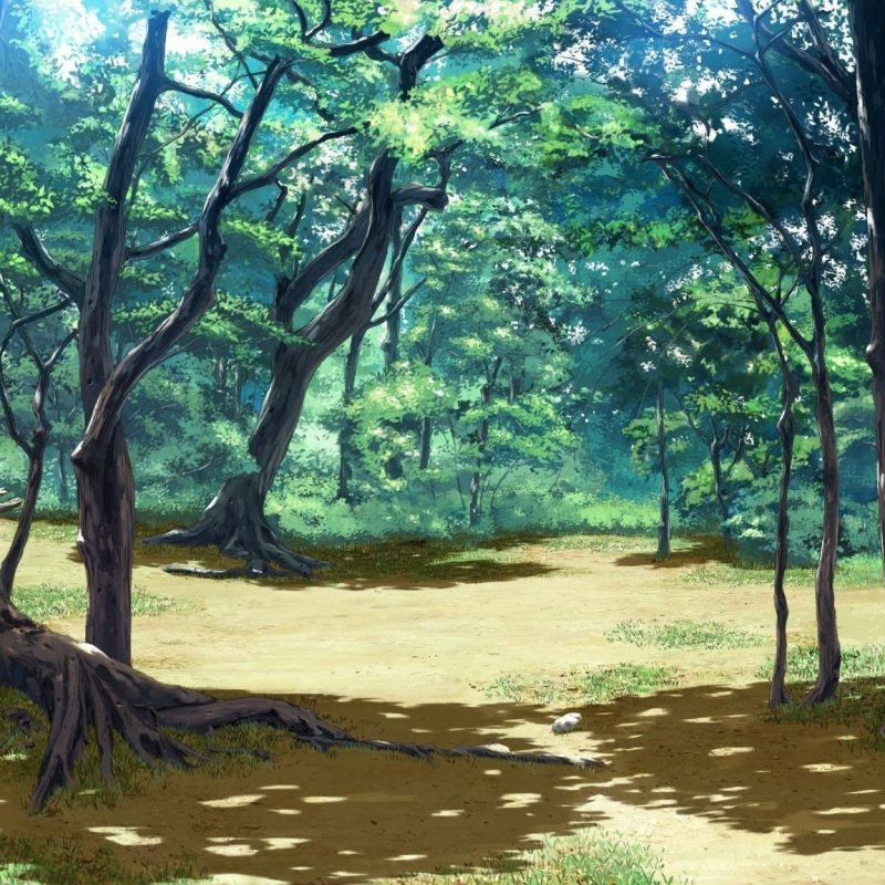 10 New Anime Forest Clearing Background FULL HD 1080p For PC Background 2020 free download anime forest background c2b7e291a0 download free stunning high resolution 1 800x800