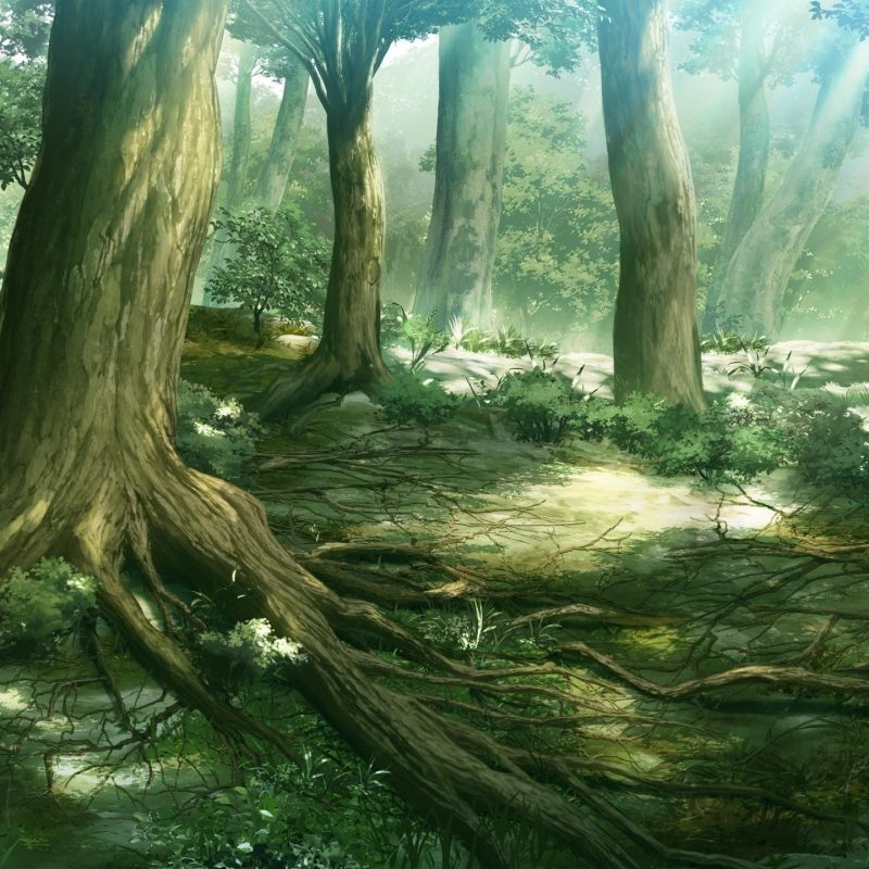 10 New Anime Forest Clearing Background FULL HD 1080p For PC Background 2020 free download anime forest background c2b7e291a0 download free stunning high resolution 800x800