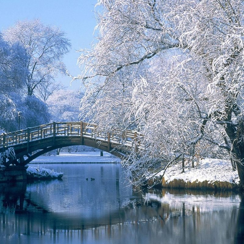 10 Best Beautiful Winter Landscapes Wallpapers FULL HD 1080p For PC Background 2020 free download anime winter scenery wallpaper 6 wallpapers pinterest winter 800x800