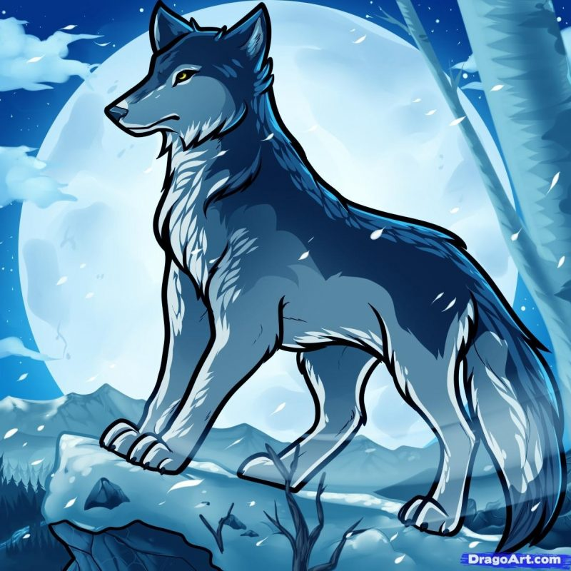 10 Most Popular Pics Of Anime Wolves FULL HD 1920×1080 For PC Background 2020 free download anime wolves images jake the anime wolf hd wallpaper and background 800x800