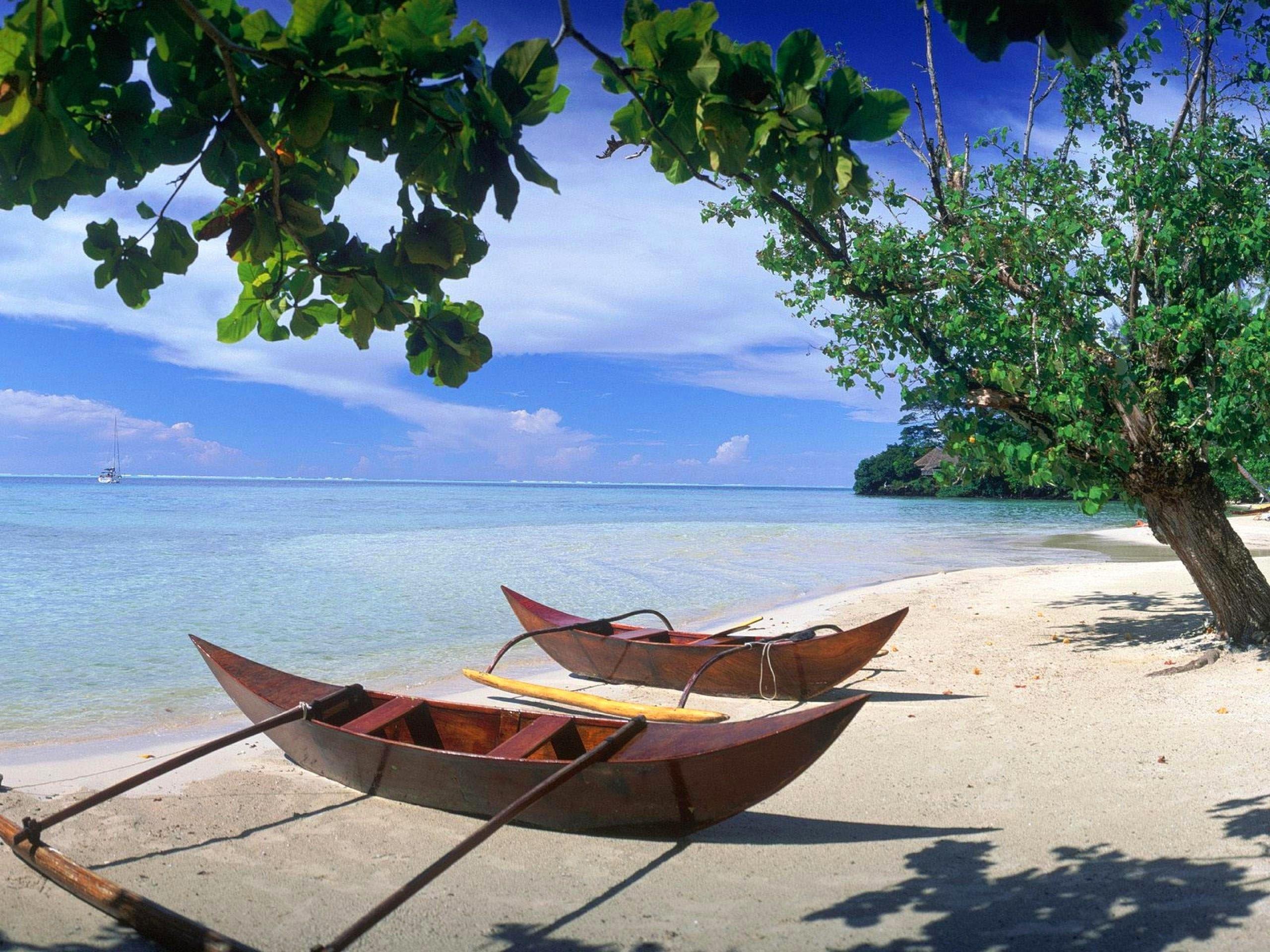 arbre – bateau – ciel bleu – feuille – horizon – mer – nuage