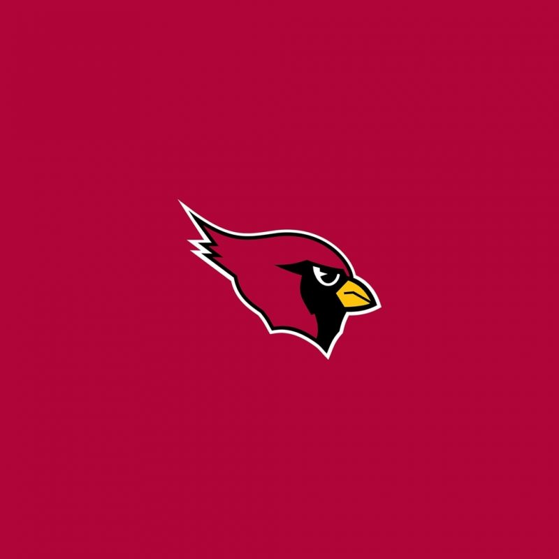 10 Most Popular Arizona Cardinals Logo Wallpaper FULL HD 1080p For PC Background 2018 free download arizona cardinals team logo ipad wallpapers digital citizen 800x800