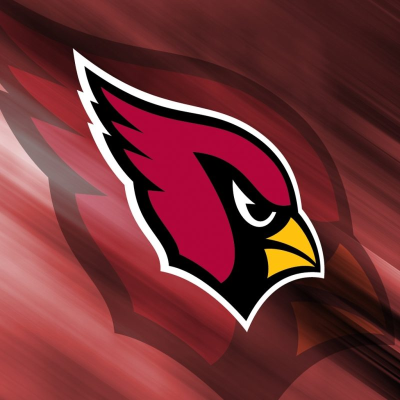 10 Most Popular Arizona Cardinals Logo Wallpaper FULL HD 1080p For PC Background 2018 free download arizona cardinals wallpaper 29844 photo 800x800