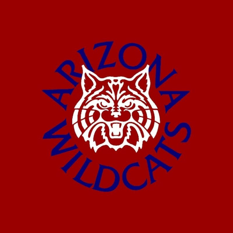 10 Most Popular University Of Arizona Wallpaper FULL HD 1920×1080 For PC Background 2018 free download arizona wildcats wallpaper 35 collections decran hd szftlgs 800x800
