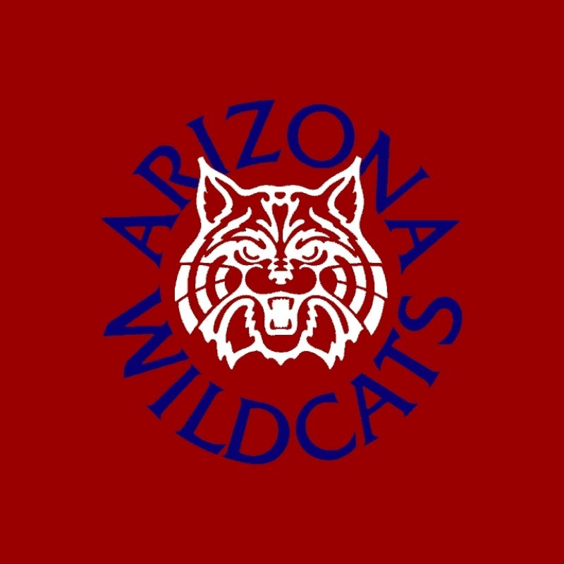 10 Top University Of Arizona Desktop Wallpaper FULL HD 1080p For PC Background 2018 free download arizona wildcats wallpapers group 44 1 800x800
