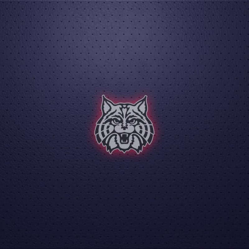 10 Top University Of Arizona Desktop Wallpaper FULL HD 1080p For PC Background 2018 free download arizona wildcats wallpapers group 44 800x800