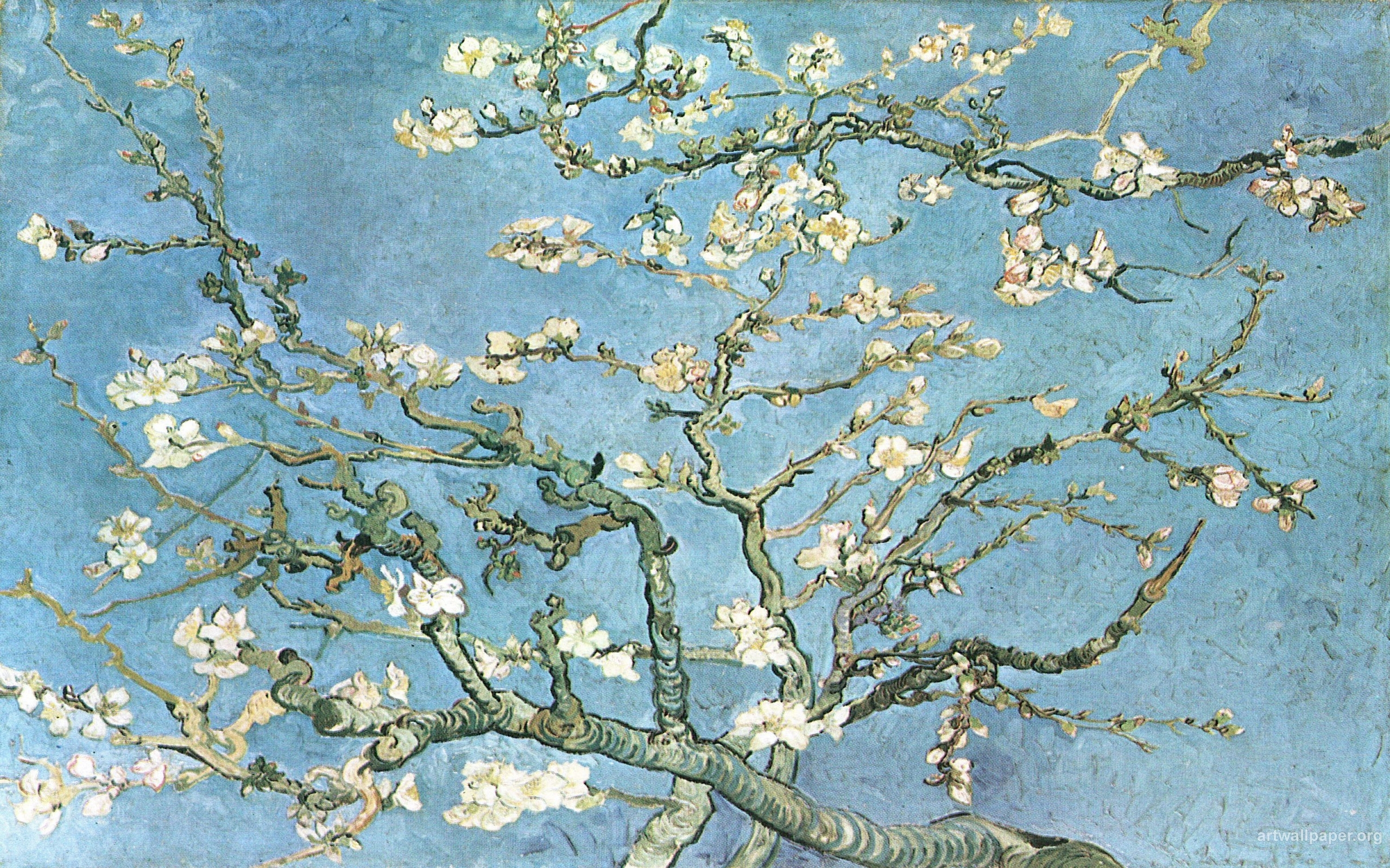 art blossoming almond tree branches vincent van gogh wallpaper