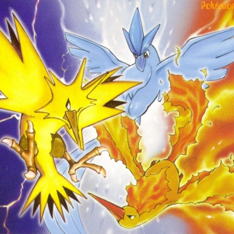 10 Top Articuno Zapdos Moltres Wallpaper FULL HD 1080p For PC Background 2021 free download articuno zapdos and moltres images articuno zapdos and moltres hd 800x800