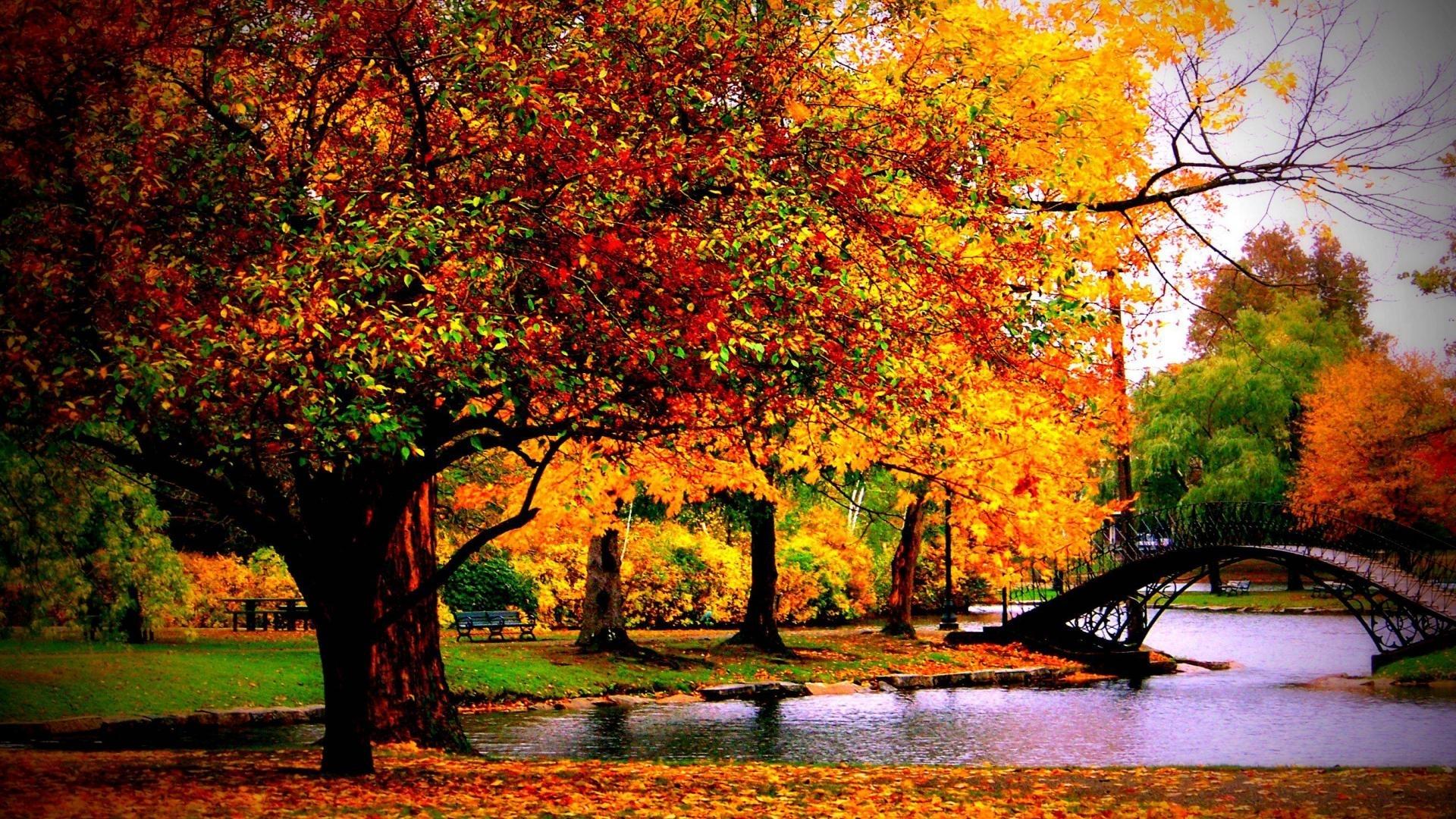 autumn desktop wallpaper hd group with 60 items