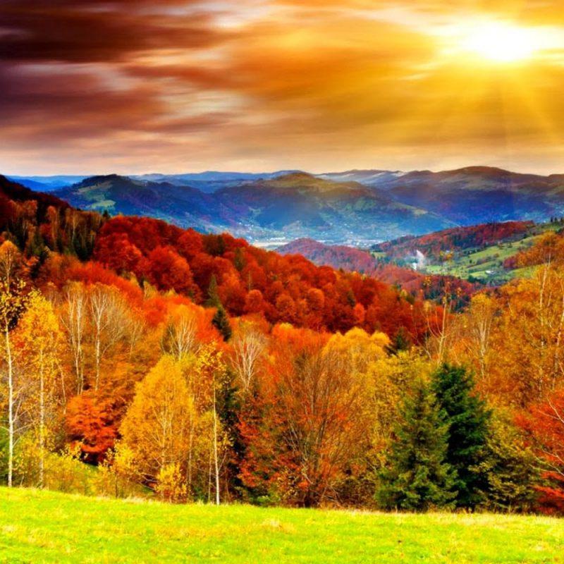 10 Top Autumn Scenes Desktop Wallpaper FULL HD 1920×1080 For PC Background 2018 free download autumn desktop wallpaper wallpapers browse 2 800x800