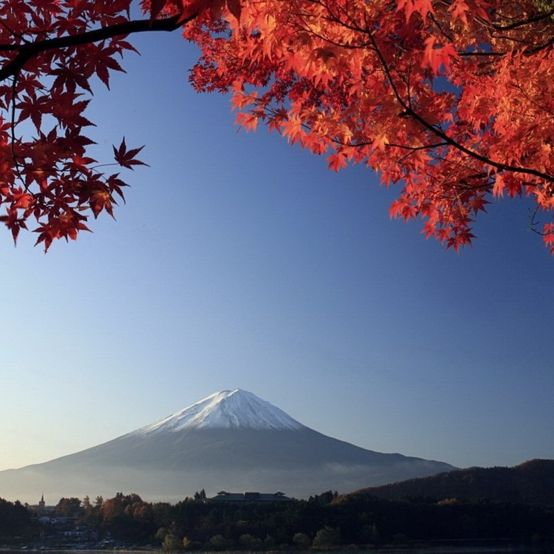 10 Top Mount Fuji Hd Wallpaper FULL HD 1080p For PC Desktop 2020 free download autumn mount fuji japan e29da4 4k hd desktop wallpaper for 4k ultra hd 800x800