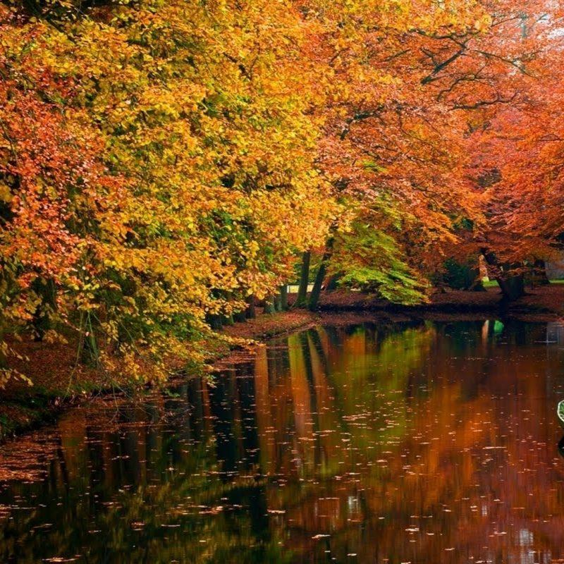 10 Best Autumn Scenery Wallpaper Hd FULL HD 1920×1080 For PC Desktop 2018 free download autumn scenery hd wallpaper 1920x1080 id46139 wallpapervortex 800x800