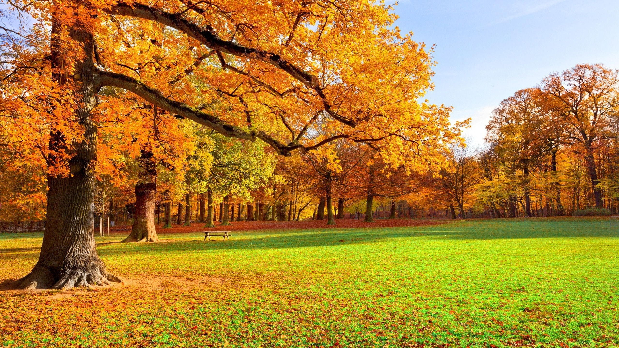 autumn scenery wallpaper hd picture gallery - imagefiesta
