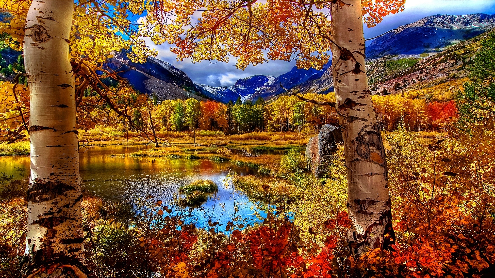 autumn scenery wallpaper | wallpaper studio 10 | tens of thousands