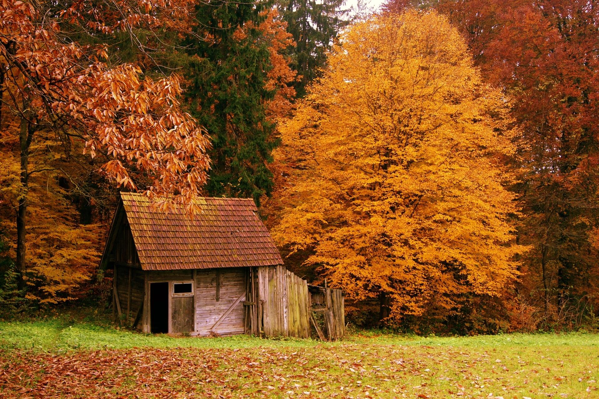 autumn scenes - desktop wallpaper