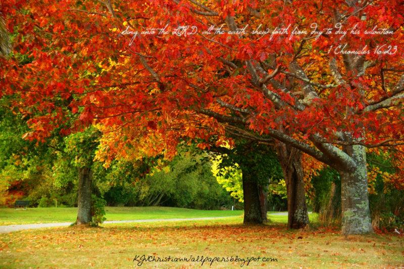 10 New Fall Scripture Wallpaper FULL HD 1080p For PC Desktop 2021 free download autumn scriptures verses wallpaper wallpapersafari 800x533