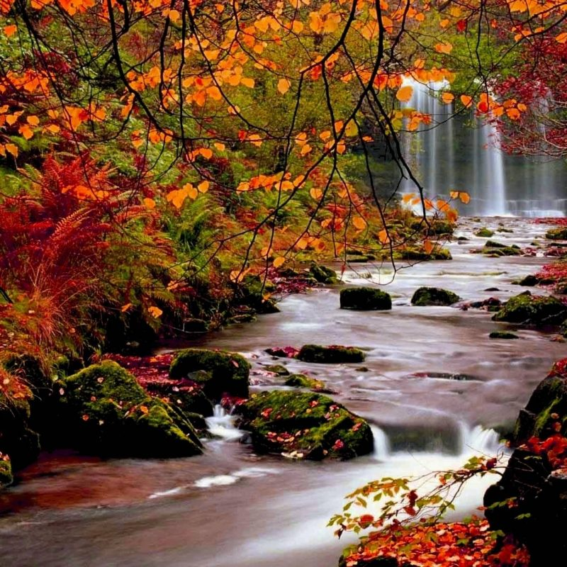 10 Best High Definition Autumn Wallpaper FULL HD 1920×1080 For PC Background 2018 free download autumn wallpaper bdfjade 800x800