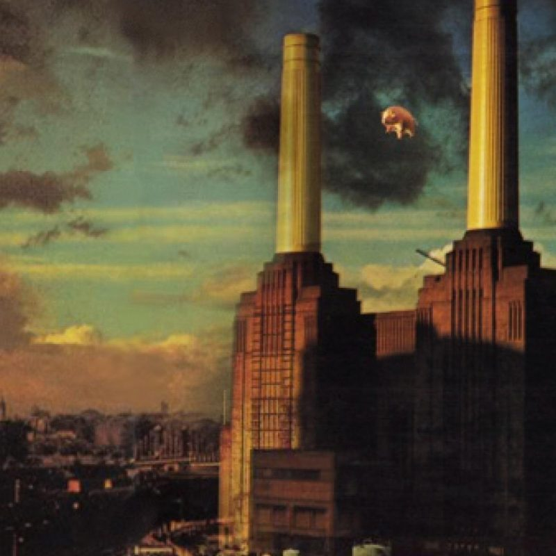 10 New Pink Floyd Animals Hd FULL HD 1920×1080 For PC Background 2020 free download awesome pink floyd animals iphone 5 wallpaper design anime 800x800