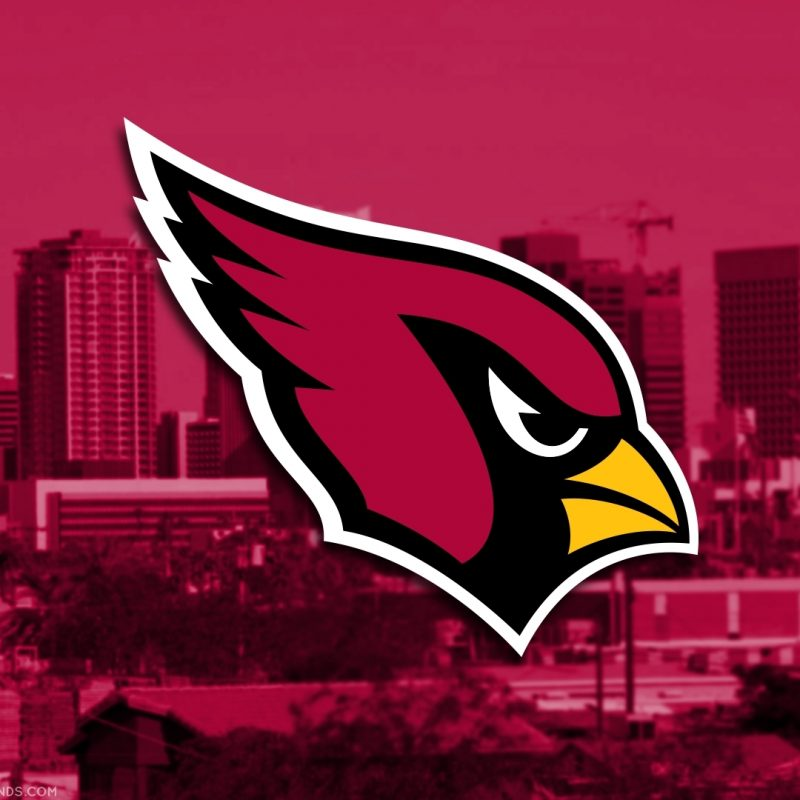 10 Most Popular Arizona Cardinals Logo Wallpaper FULL HD 1080p For PC Background 2021 free download az cardinals wallpaper high resolution 4k desktop arizona pc iphone 800x800
