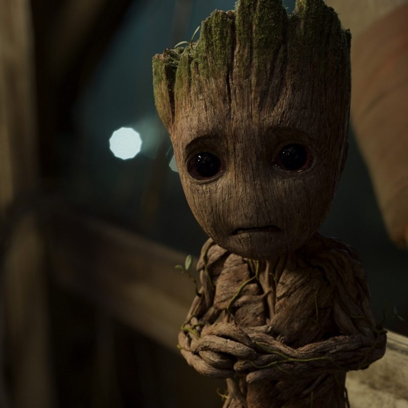 10 Most Popular Baby Groot Desktop Background FULL HD 1920×1080 For PC Desktop 2021 free download baby groot guardians of the galaxy v wallpaper 38458 800x800