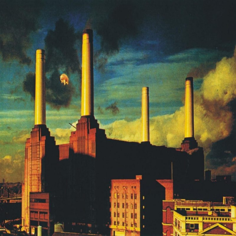 10 New Pink Floyd Animals Hd FULL HD 1920×1080 For PC Background 2020 free download backtracks pink floyd animals pink floyd pink floyd albums and 800x800