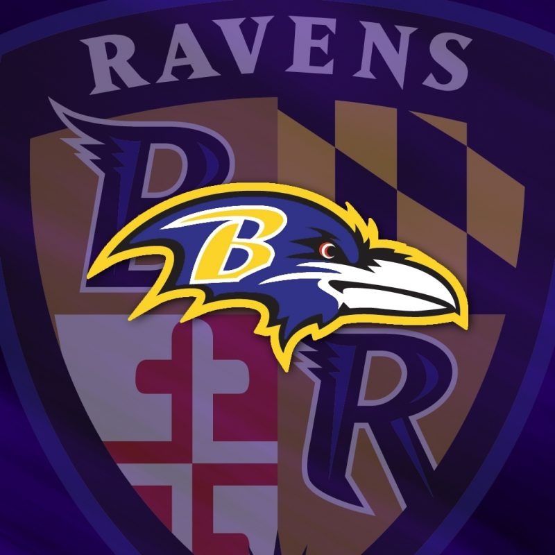 10 Best Baltimore Ravens Wallpapers Free FULL HD 1080p For PC Desktop 2018 free download baltimore ravens nfl team wallpaper 800x800