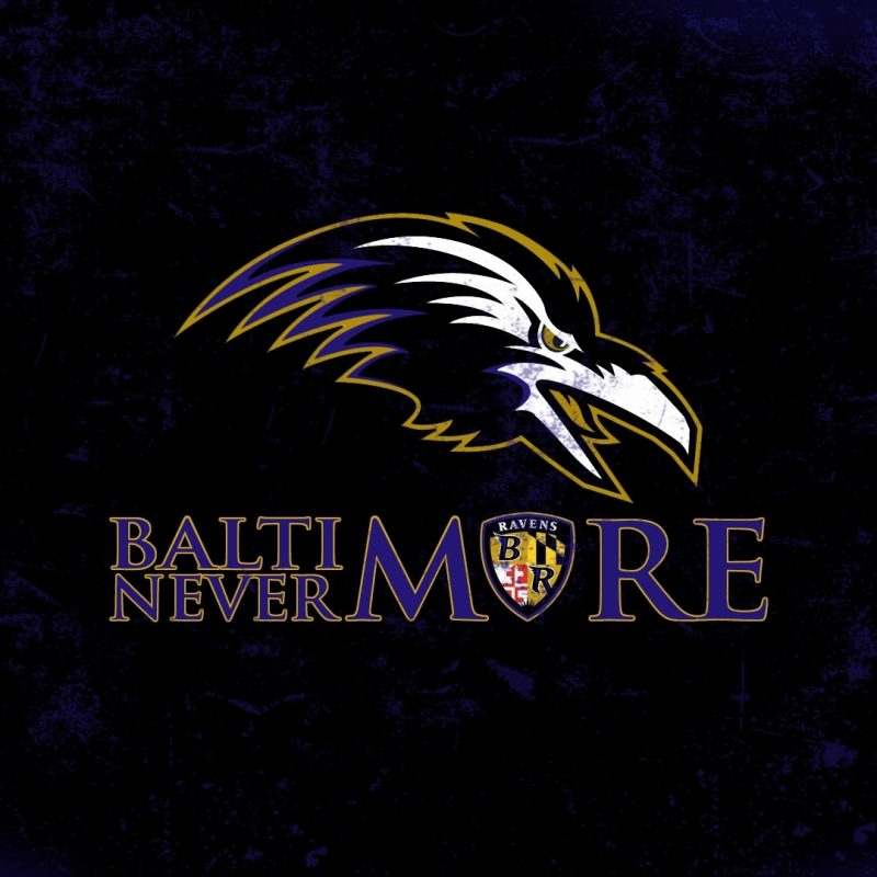 10 Best Baltimore Ravens Wallpapers Free FULL HD 1080p For PC Desktop 2018 free download baltimore ravens screensavers impremedia 800x800