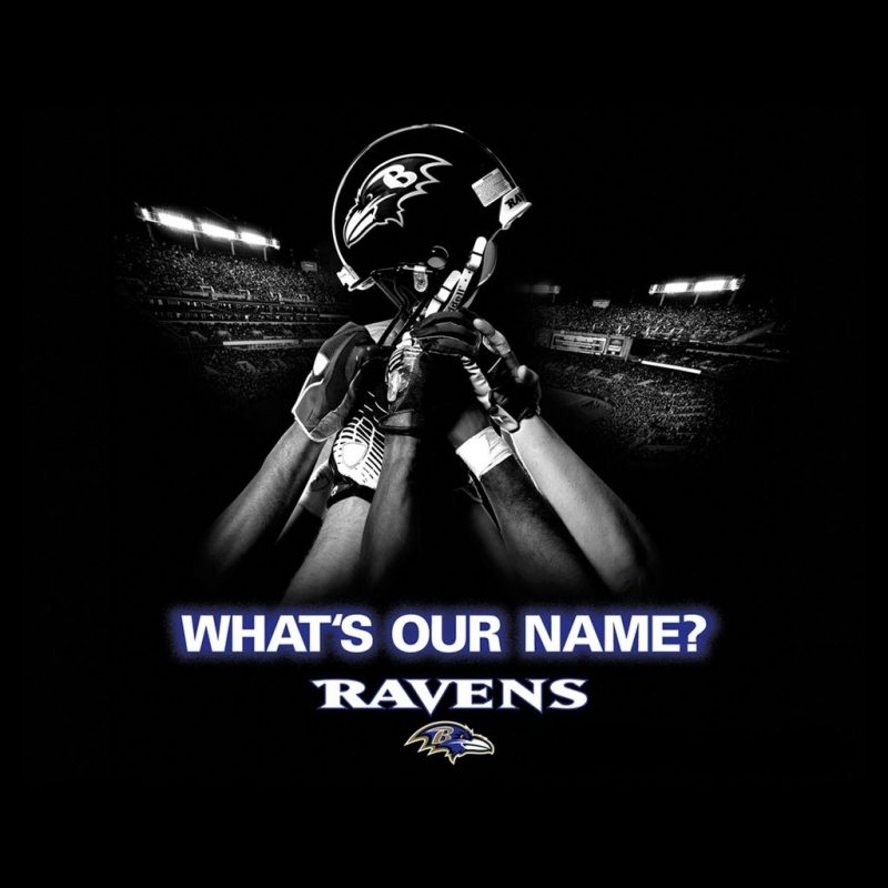 10 Best Baltimore Ravens Wallpapers Free FULL HD 1080p For PC Desktop 2018 free download baltimore ravens wallpapers and pictures graphics download for free 1 800x800