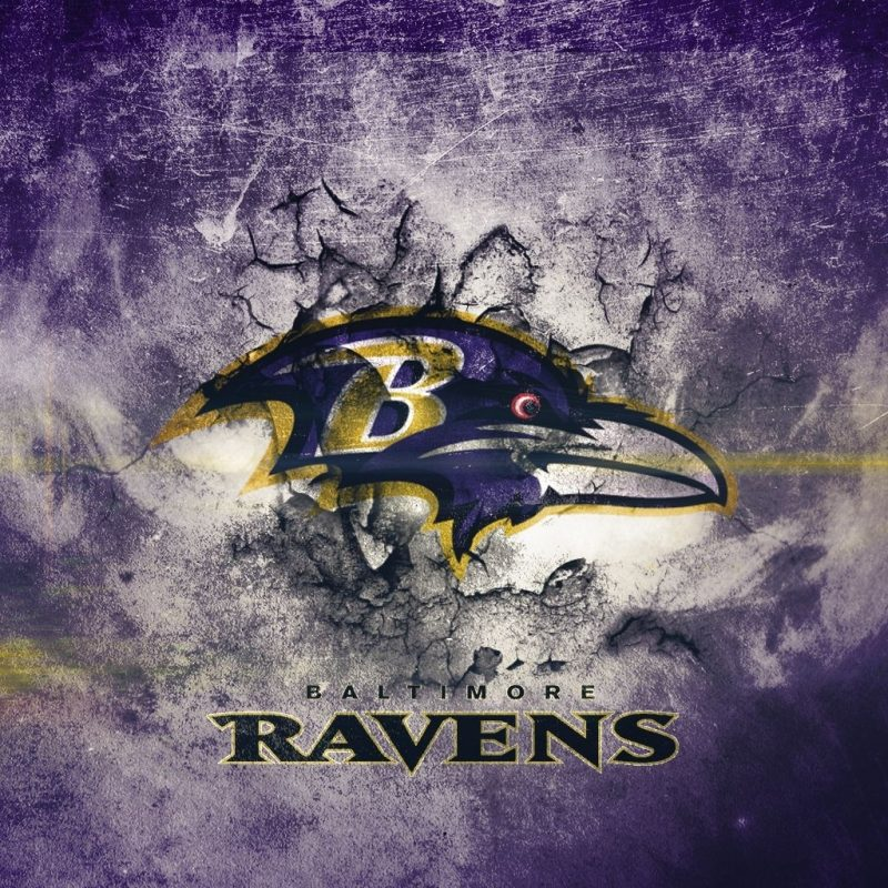 10 Best Baltimore Ravens Wallpapers Free FULL HD 1080p For PC Desktop 2018 free download baltimore ravens wallpapers and pictures graphics download for free 800x800