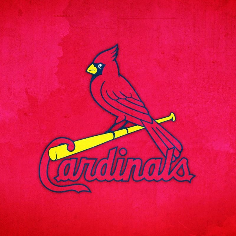 10 Most Popular St Louis Cardinal Wallpaper FULL HD 1920×1080 For PC Desktop 2018 free download baseball wallpaper new st louis cardinal wallpaper free impremedia 800x800