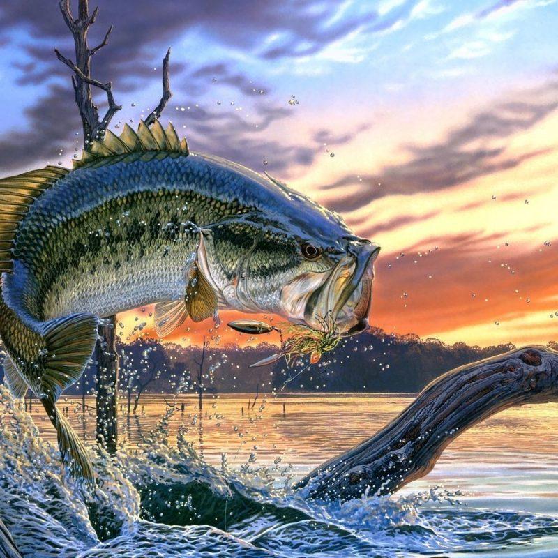 10 Latest Bass Fishing Wallpaper Hd FULL HD 1080p For PC Desktop 2021 free download bass fishing bass fishing wallpaper backgrounds wallpaper cave 800x800