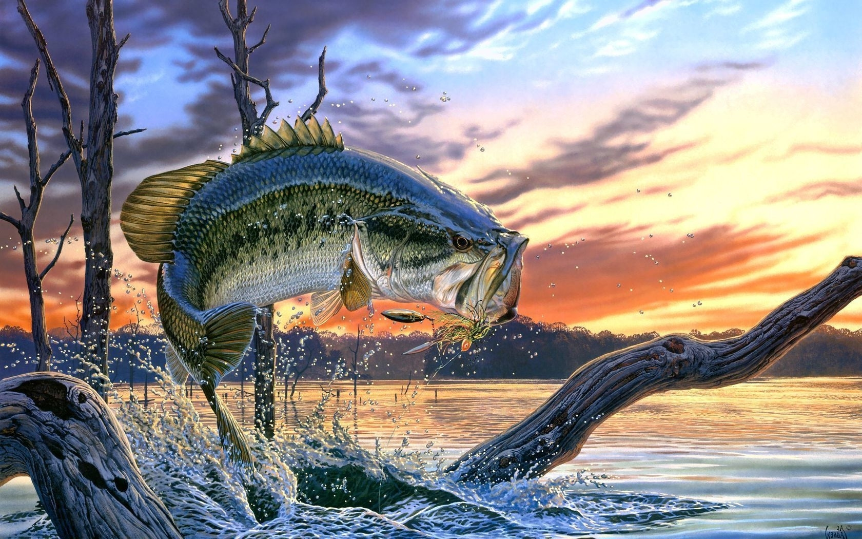 bass fishing | bass fishing wallpaper backgrounds wallpaper cave