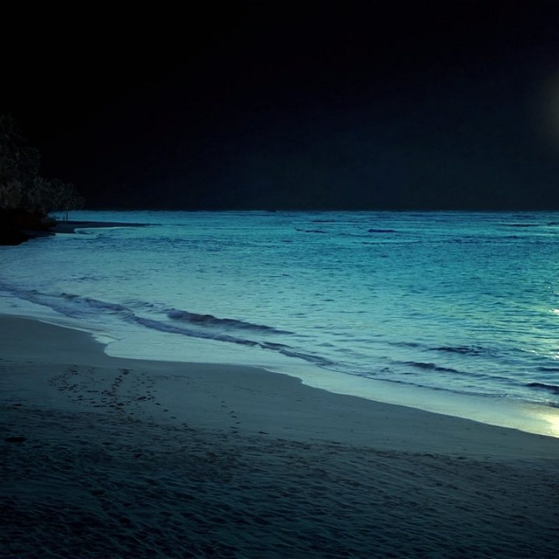 10 New Beach At Night Wallpaper FULL HD 1080p For PC Background 2018 free download beach at night hd desktop wallpaper instagram photo background 800x800