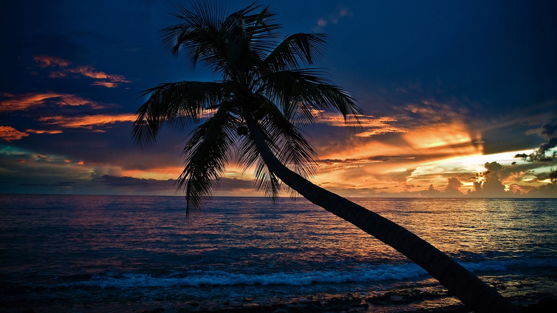 beach at night hd wallpaper. - media file | pixelstalk