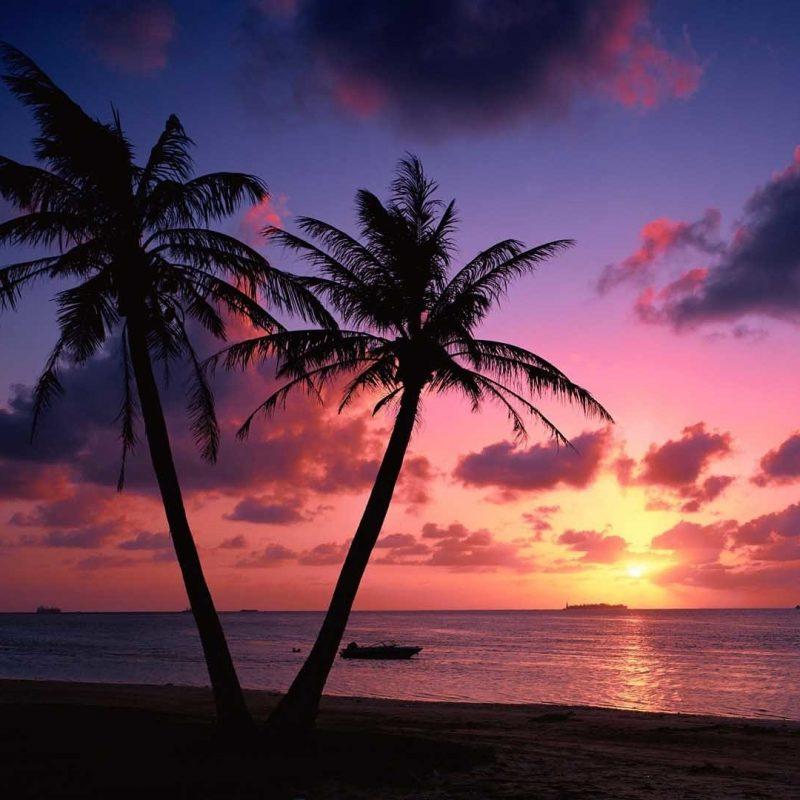 10 New Beach Sunset Desktop Wallpaper FULL HD 1080p For PC Desktop 2018 free download beach sunset desktop wallpaper 70 images 800x800
