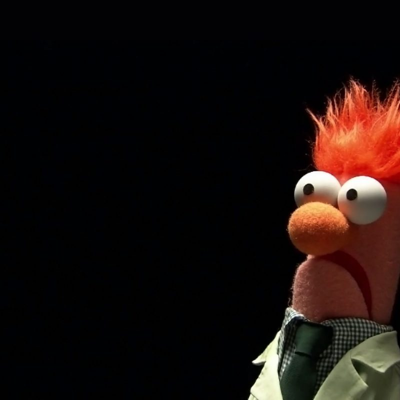 10 Best Image Of Beaker Muppets FULL HD 1920×1080 For PC Desktop 2018 free download beaker is a god among muppets geeked out pinterest childhood 800x800