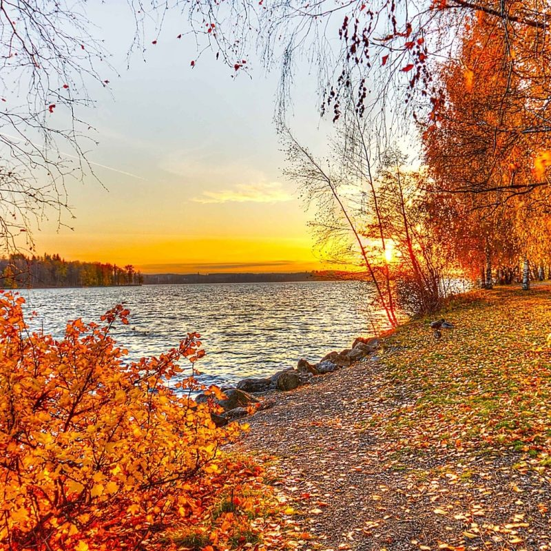 10 Latest Autumn Landscape Wallpaper Hd FULL HD 1920×1080 For PC Desktop 2018 free download beautiful autumn landscape free wallpaper wallpaper wonderful life 1 800x800