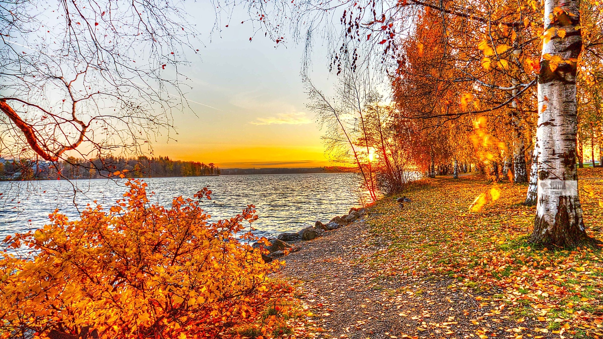 beautiful autumn landscape free wallpaper wallpaper | wonderful life