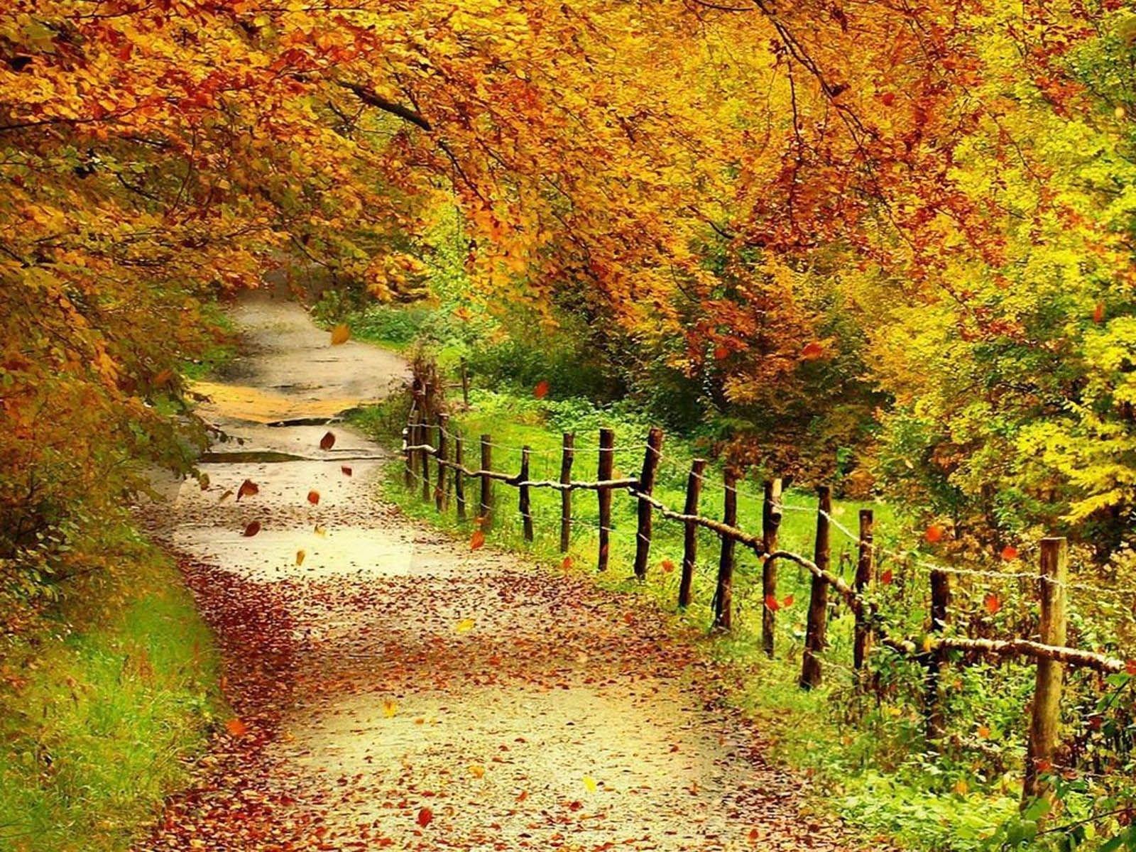 beautiful autumn scenery   tag: beautiful autumn scenery wallpapers