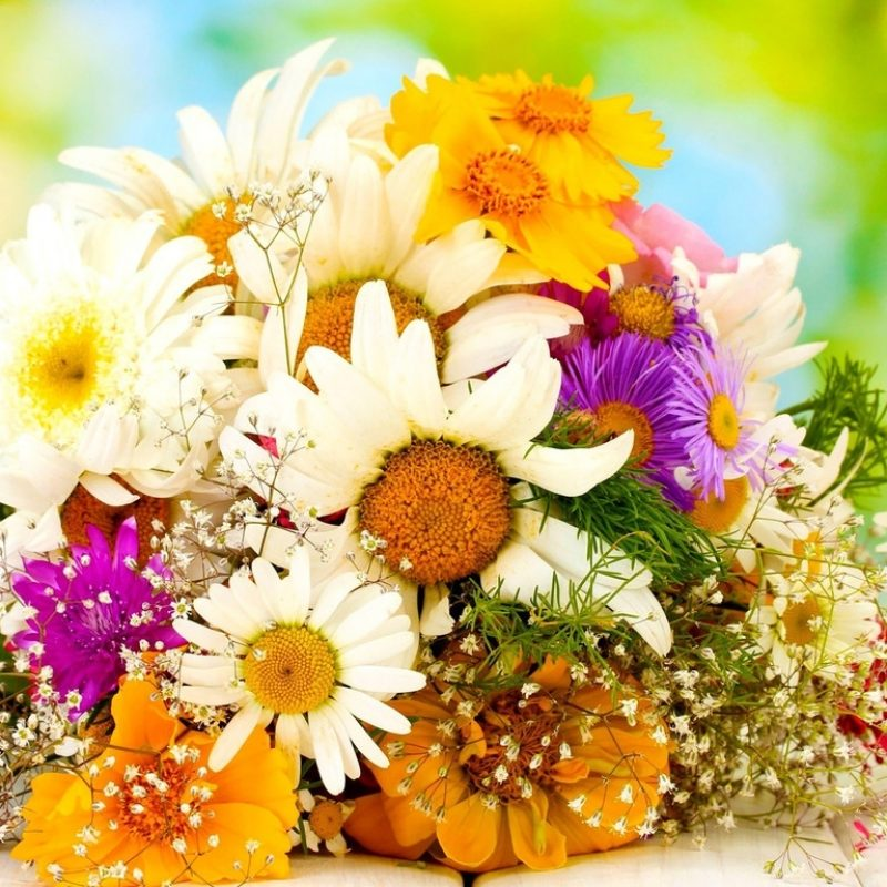 10 Top Beautiful Flower Bouquets Pictures FULL HD 1920×1080 For PC Desktop 2020 free download beautiful bouquet flowers stock flower images pinterest 800x800