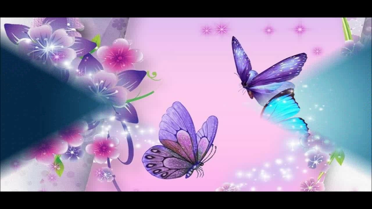beautiful butterfly wallpapers hd pictures - youtube
