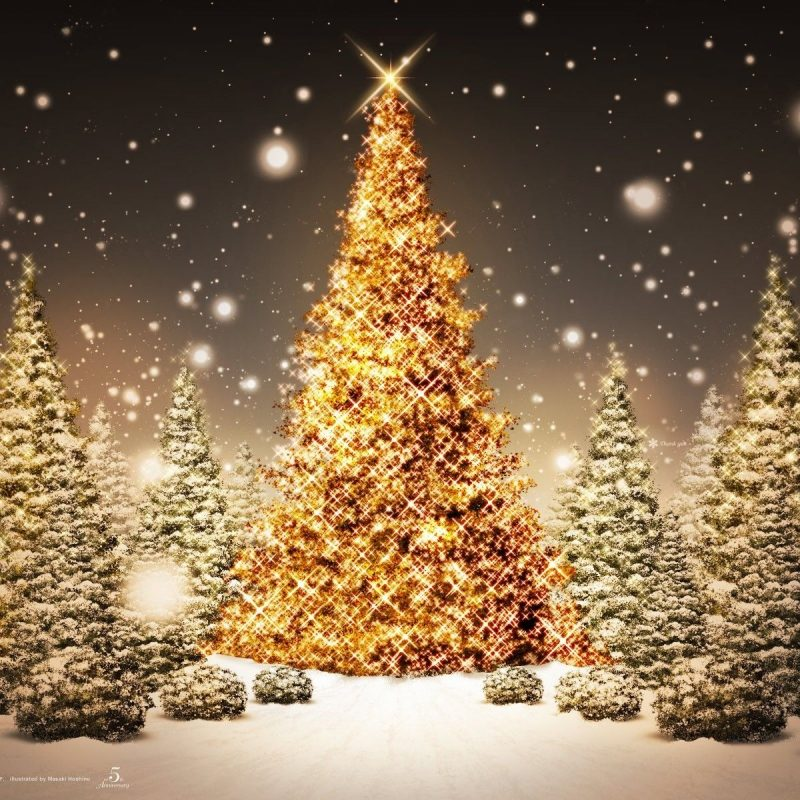 10 Best Christmas Tree Pictures For Desktop FULL HD 1920×1080 For PC Desktop 2018 free download beautiful christmas scenes jesus 50 beautiful christmas desktop 800x800