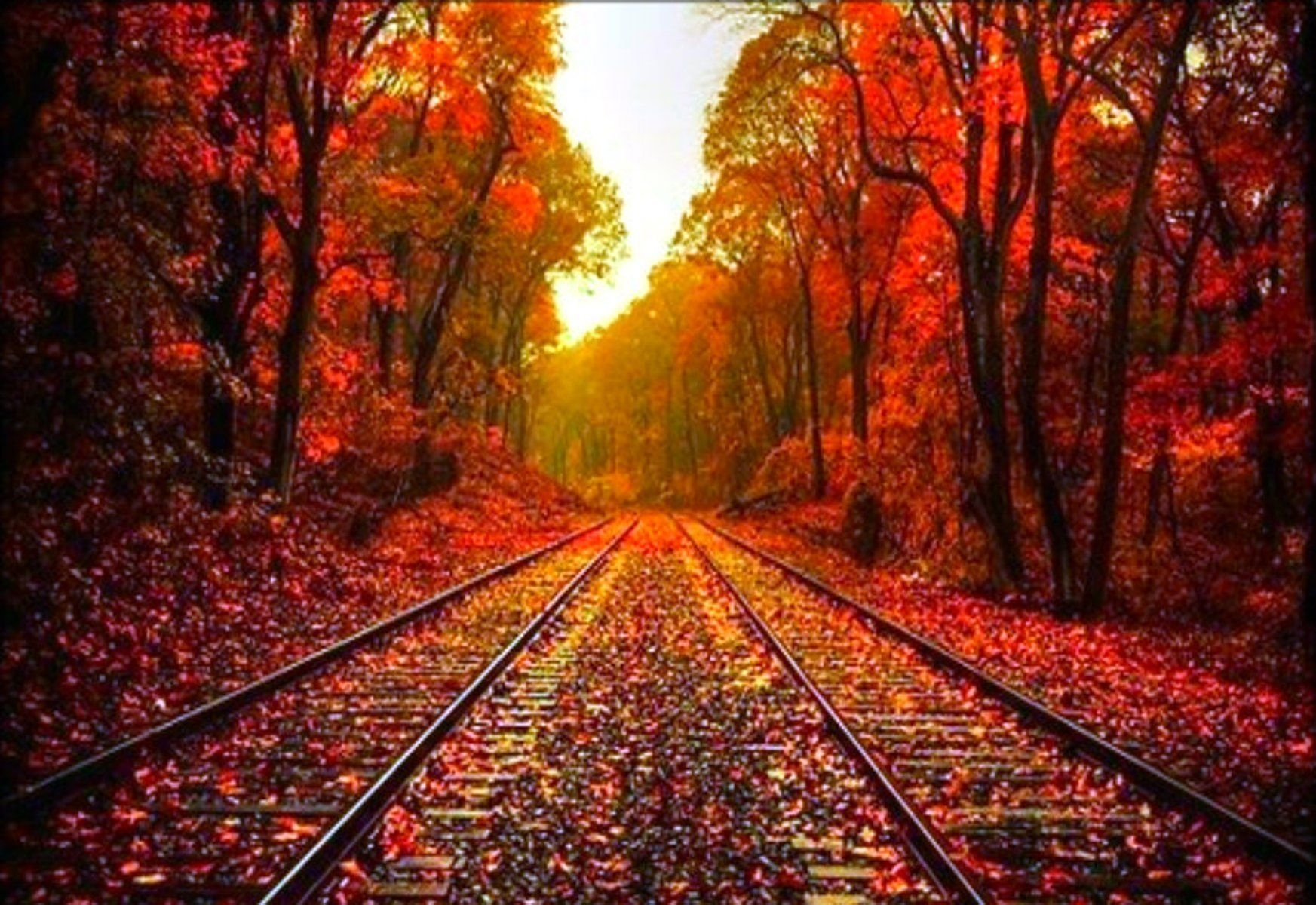 beautiful fall pictures | beautiful autumn wallpaper « desktop