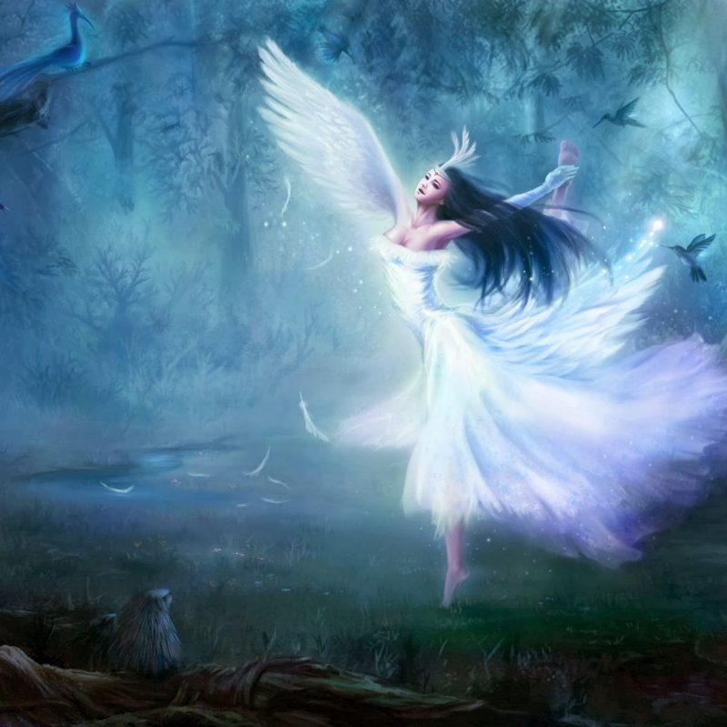 10 Best Most Beautiful Fairy Pictures FULL HD 1080p For PC Background 2021 free download beautiful fantasy fairy hd wallpapers fine food 800x800