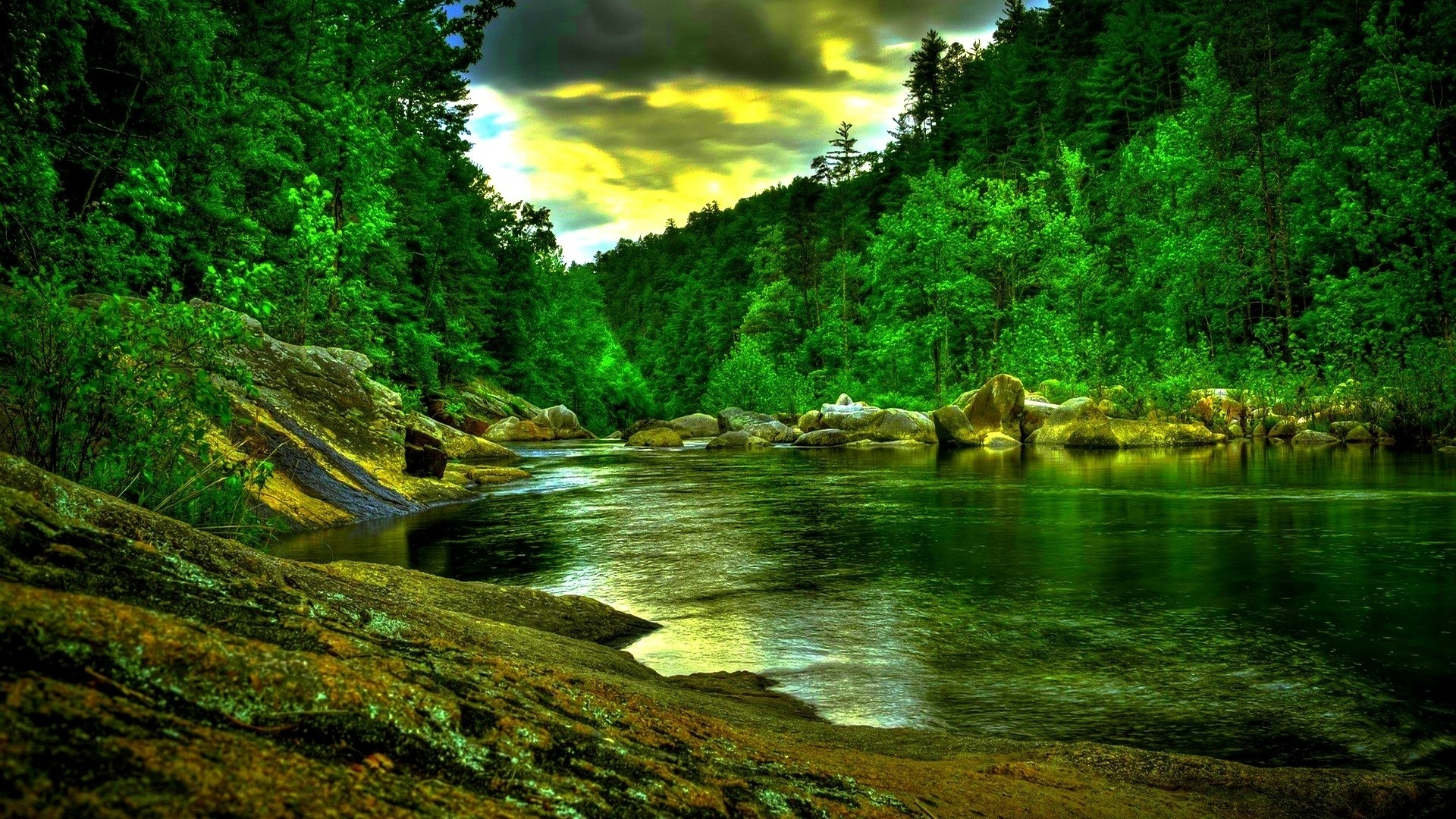 beautiful green forest river wide hd wallpaper - stylishhdwallpapers