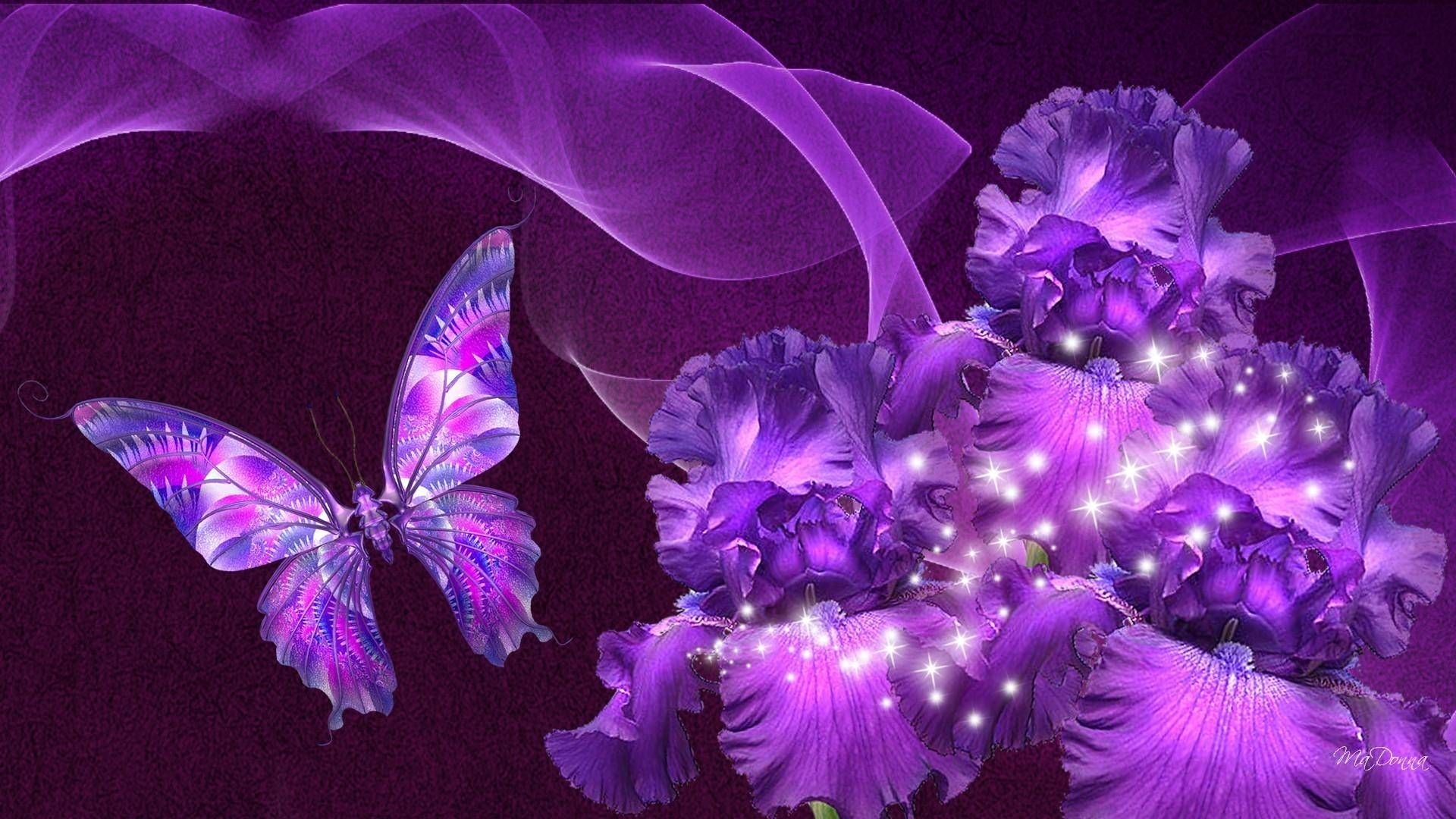 beautiful purple flowers images - bing images | butterflies