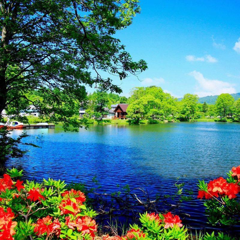 10 Top Scenic Wallpaper For Desktop FULL HD 1920×1080 For PC Desktop 2020 free download beautiful scenery wallpaper desktop wallpaper 60 images 800x800