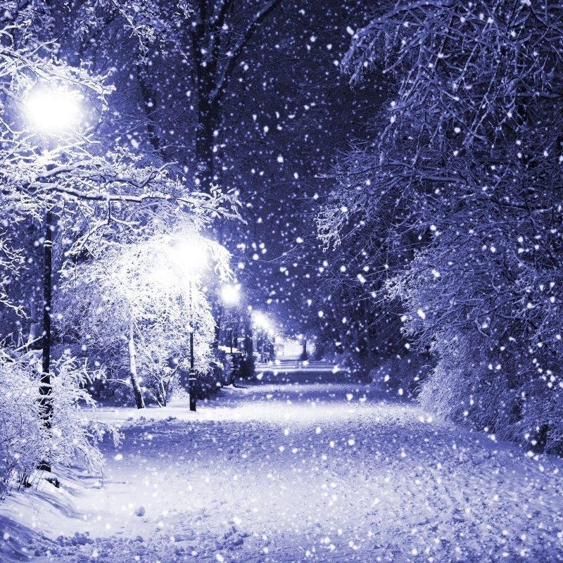 10 Top Beautiful Snow Falling Wallpapers FULL HD 1080p For PC Desktop 2018 free download beautiful snow falling virtual university pakistan homes 800x800