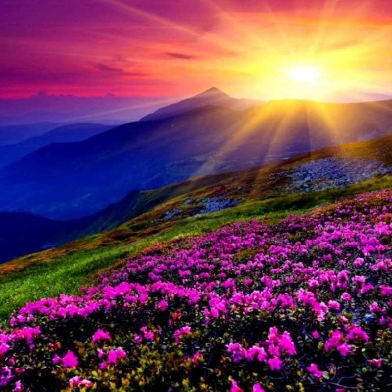 10 New Beautiful Sunset Mountain Wallpapers FULL HD 1920×1080 For PC Background 2021 free download beautiful sunset mountain wallpapers wallpapers gallery 800x800