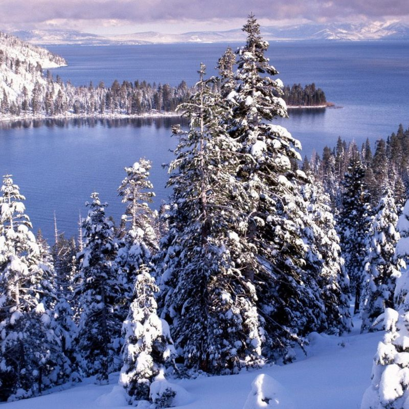 10 Best Beautiful Winter Landscapes Wallpapers FULL HD 1080p For PC Background 2020 free download beautiful winter landscape white forest and cold water 800x800